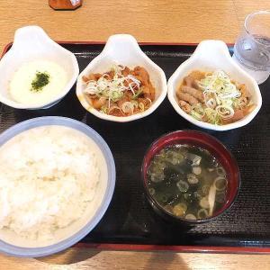 パンチ&赤パンチの食べくらべ(山田うどん食堂)