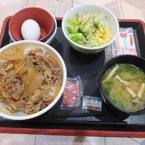 すき家のランチ税込み500円(イオン太田)