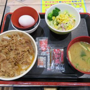 すき家のランチセット税込み500円(イオン太田店)