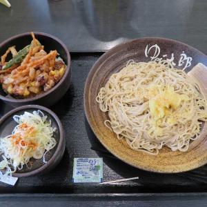 新メニュー ミニゲソと夏野菜のかきあげ丼セット(ゆで太郎)
