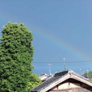 東の空に虹が出た!