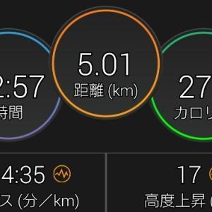 近所をジョギング