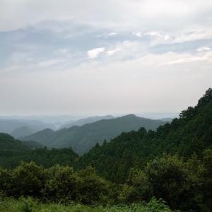 青梅丘陵ハイキングコースでトレイルラン、その後欲しかったトレランシューズ購入。