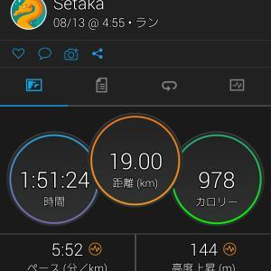 山と道 5pocket shorts
