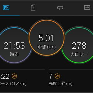 夜の閾値走5km。富士登山競争中止の癒しは花陽浴