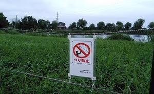高須賀池公園、そうなのか