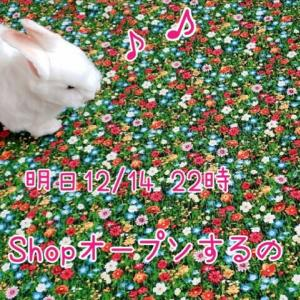 《SHOP》明日 オープン!and トンネルちゃん全柄集合♪