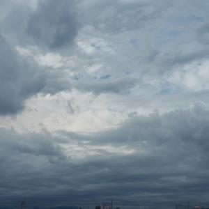 空を写して、のほほん