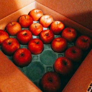 軽井沢からリンゴが届きました🎶