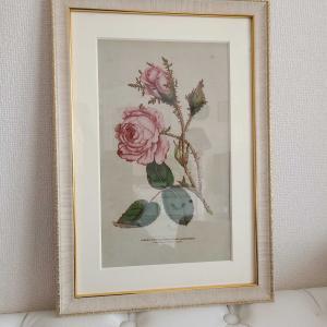 薔薇のボタニカル複製を飾る幸せ