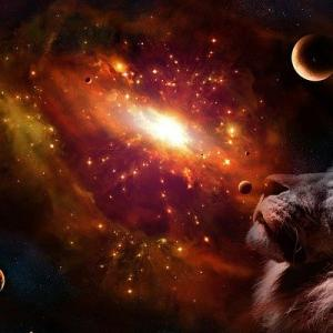 宇宙の神秘☆ライオンズゲートとはなんぞや?