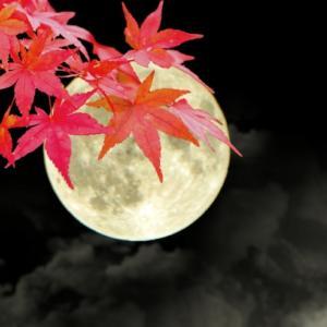 十三夜とハロウィンと満月がやってくる ~ ブルームーンは感謝と共に ~