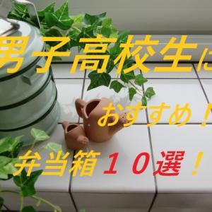 男子高校生におすすめ!弁当箱10選!