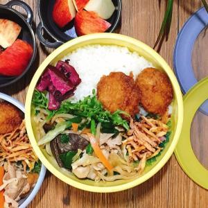 野菜たっぷり栄養たっぷり肉野菜炒め弁当