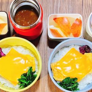 飲める?チーズオムカレー風のスープジャー弁当&お風呂からの大音量