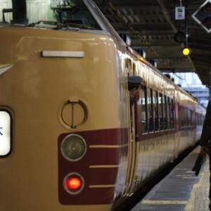 千葉駅の189系国鉄色