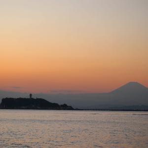 江ノ電沿線を散歩したよ