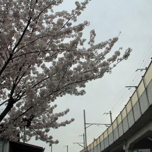 春の北陸旅行・復活、上田電鉄(5)