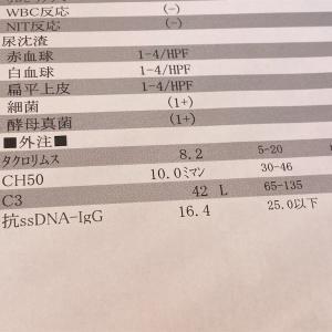 病院3件はしごの日。プレドニンが減ったぞ~!