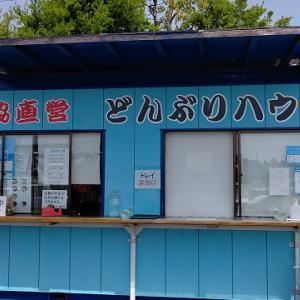 静岡市駿河区:どんぶりハウスの生しらす丼