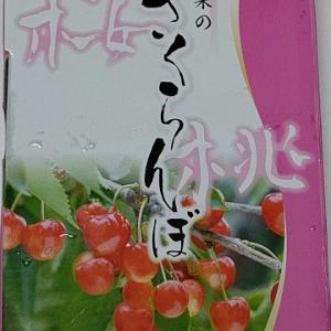 山梨のさくらんぼ