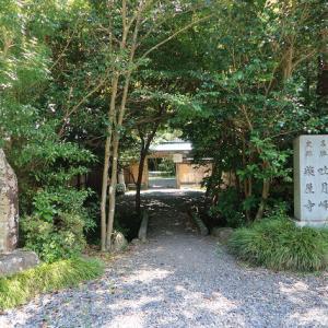 静岡市駿河区:吐月峰柴屋寺(とげっぽうさいおくじ)