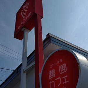 静岡市葵区:なかじま農園カフェのメロンメロンパフェ