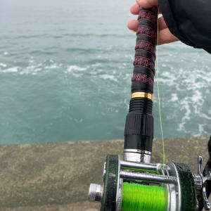今年初めてのカゴ釣り