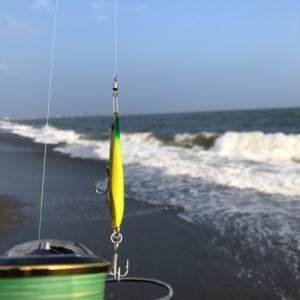 久しぶりにルアーを使ってフラットなお魚に挑戦!