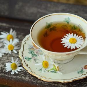 麦茶はいつまで飲むの?
