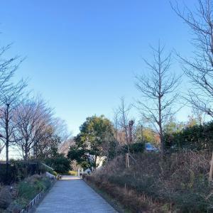 コロナ影響!東京横浜独逸学園の人気イベント「フリーマーケット」が5月開催に変更