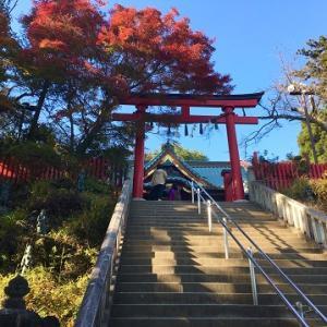 高尾山で紅葉狩り!