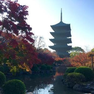 京都懐石料理と東寺!