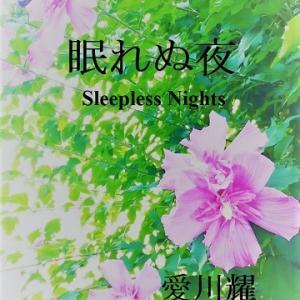 『眠れぬ夜』電子出版!
