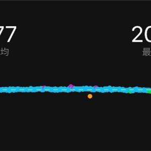 フォーム改造と坐骨神経痛-2019.08.18