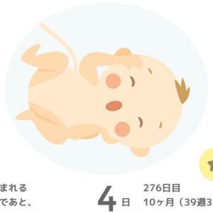 【妊娠記録】予定日4日前の妊婦検診