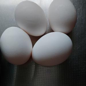 半熟卵の味付玉子を作る