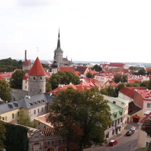 エストニア・タリン日帰り観光 世界遺産の中世の街並みへ ポイントまとめ