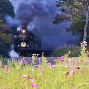 令和元年10月13日 SLやまぐち復路 煙のぼせにしては珍しく・・・