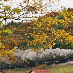 令和元年11月8日 山口線サッポロビール団臨復路 狙うは夕景。でも雲がなあ・・・