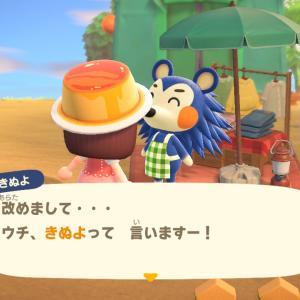 【あつ森】あつ森プレイ日記7日目・きぬよがやって来た!