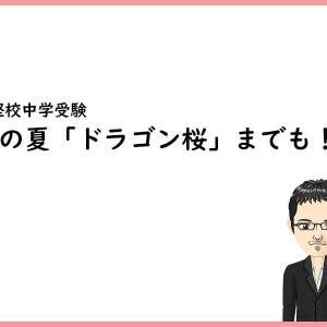 この夏「ドラゴン桜」までも!?