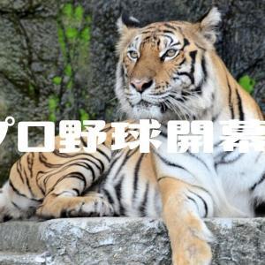 プロ野球開幕 ~いけいけ!阪神タイガース~