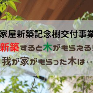 【松本市家屋新築記念樹交付事業】新築したら樹木がもらえる!申請方法、植栽方法と我が家の木の紹介。