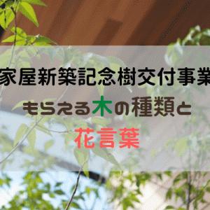 【松本市家屋新築記念樹交付事業】もらえる木の種類とその花言葉。