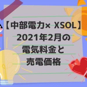 【中部電力×XSOL】2021年2月の電気料金と売電価格。