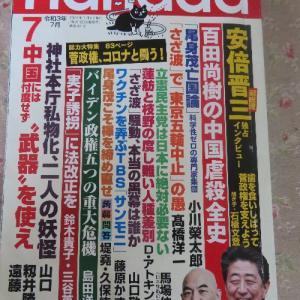 【月刊Hanada】新型コロナは、風邪に毛の生えたようなもの? 安倍擁護の論理 前篇