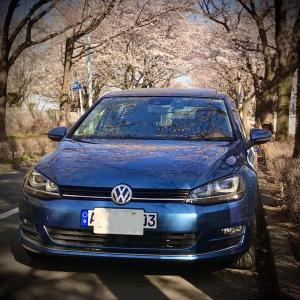 【VW】VWゴルフⅦ・スカイブルー号でお花見