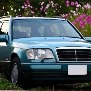 【W124】「ベリルワゴン」秋の三輪緑山ロケ
