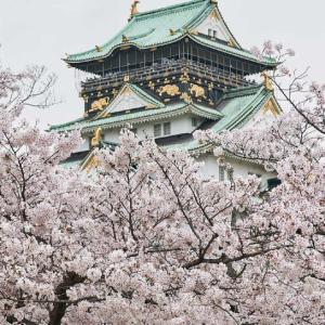日本の城と一緒に桜を楽しむならココ!大阪、東京、神奈川、福島、で運気を高めよう